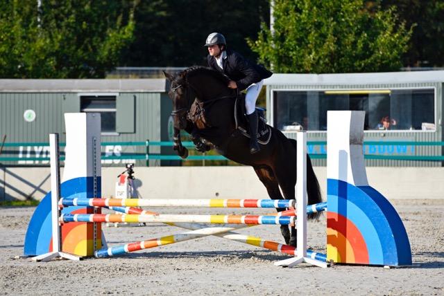 jumpinghorses-horseforsale-sportpaarden-tekoop-fokkerij-DeVlasrede