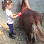 Boerderijkamp initiatie ponyrijden