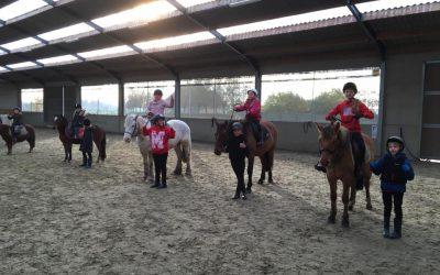 ponykamp2